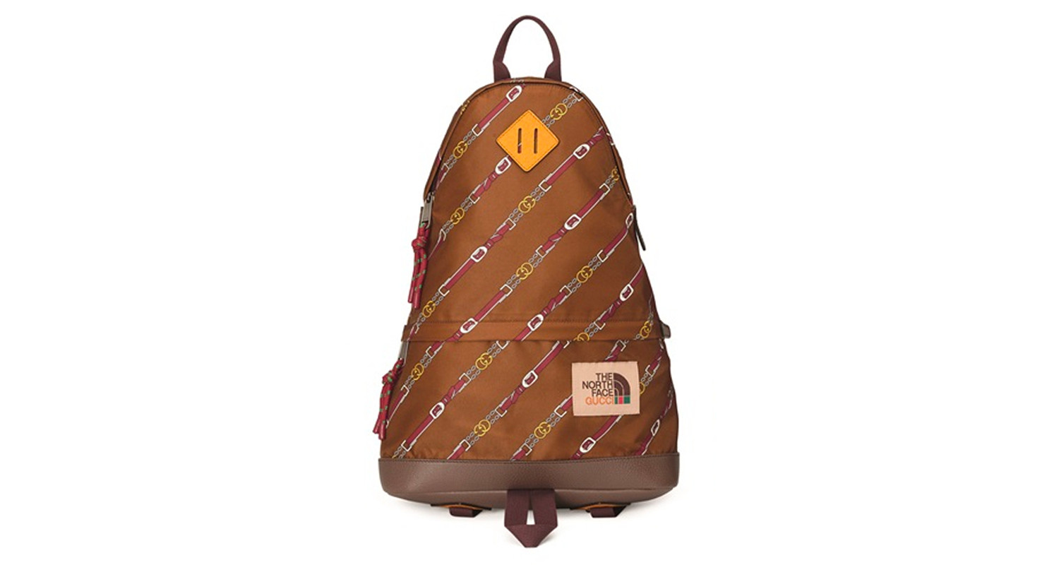 "Gucci x The North Face ""Brown Backpack"""
