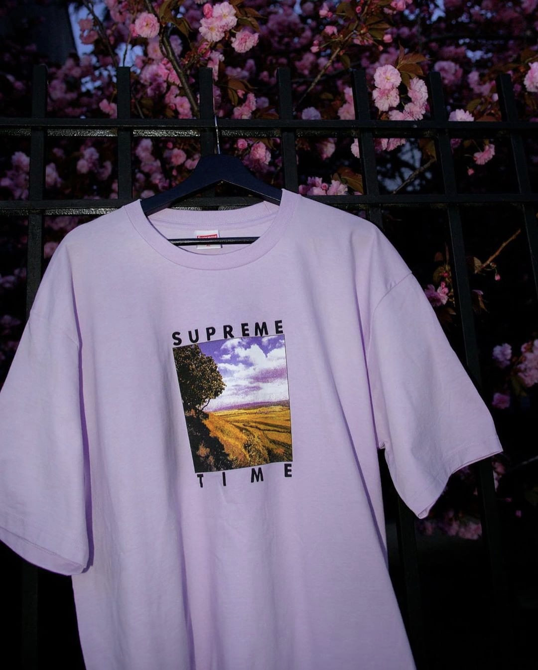 Supreme Spring Tees 2020