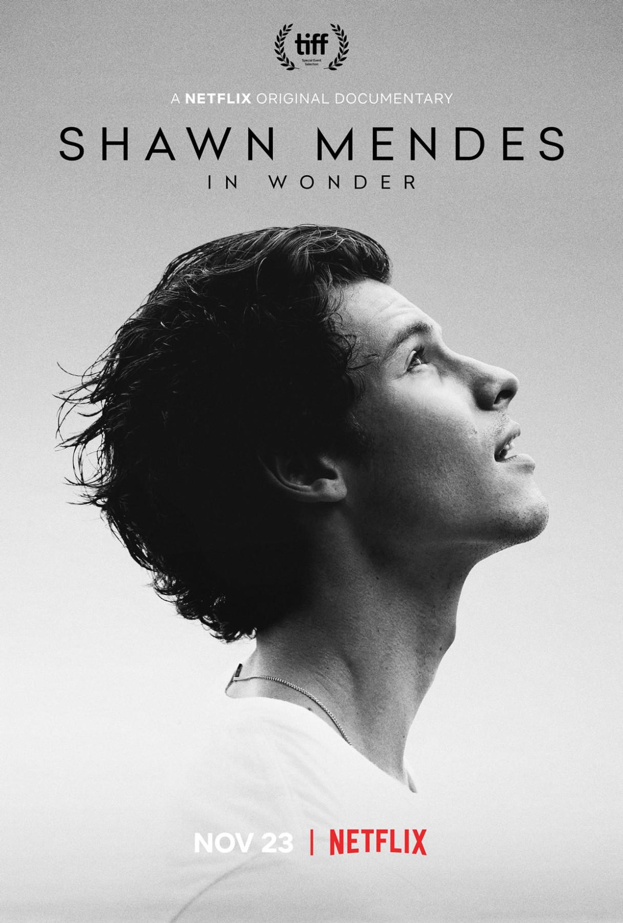 shawn-mendes-in-wonder